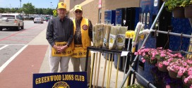 Lion's Club Broom Sale